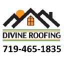 Divine Roofing Inc logo