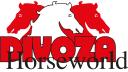 Divoza Horseworld logo icon