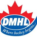 Dmhl logo icon