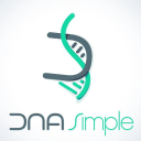 Dn Asimple logo icon