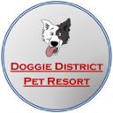 Doggie District Az logo icon