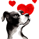 Dog Health logo icon