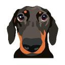 Dog Shaming logo icon