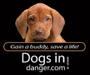 Dogs In Danger logo icon