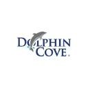 Dolphin Royal Swim logo icon