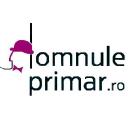 Domnuleprimar logo icon