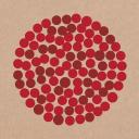 Donatos logo icon