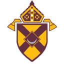 Diocese Of Rochester logo icon
