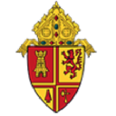 Diocese Of St logo icon