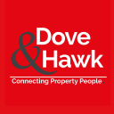 Dove & Hawk logo icon