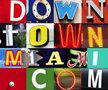 Downtownmiami logo icon