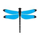 Dragonfly Digital Marketing logo icon