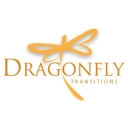 Dragonfly Transitions logo icon