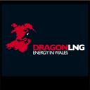 Dragon Lng logo icon