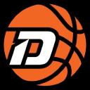 Dr Dish Basketball logo icon