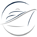 Dreamlines logo icon