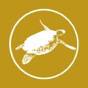 Dream Yacht Charter logo icon