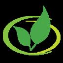Dr Gangemi logo icon