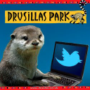 Drusillas logo icon