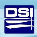 Dsi logo icon