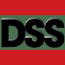 Dss logo icon
