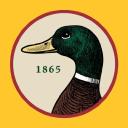Duck Head logo icon