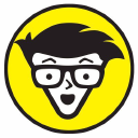 Dummies logo icon