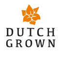 Dutch Grown logo icon