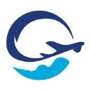 Duty Free Information logo icon
