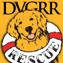 Delaware Valley Golden Retriever Rescue logo icon