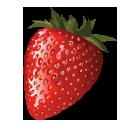 Dvo Enterprises logo icon