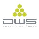 Dws Systems logo icon