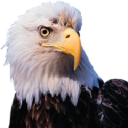 Eagle America Corporation logo