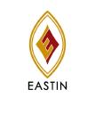 Eastin logo icon
