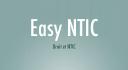 easyntic.com logo