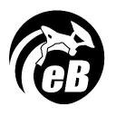 eBodyboarding.com logo