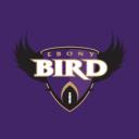 Ebony Bird logo icon