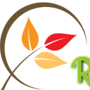 E Home Remedies logo icon