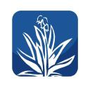 El Paso Herald logo icon