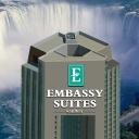 Niagara Falls Weddings logo icon