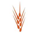 engrain.us logo
