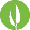 Eucalypt Media logo icon