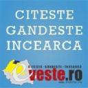 eVeste Romania logo