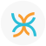 Excel Physical Therapy and Fitness logo