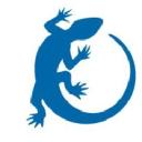 Exotix logo icon