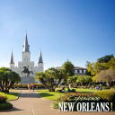 Experience New Orleans! logo icon