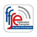 Fédération Française Du Sport D'entreprise logo icon