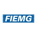 Fiemg.com