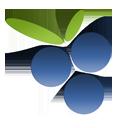 Findberry Logo