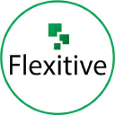 Flexitive logo icon